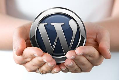 WordPress undervisning