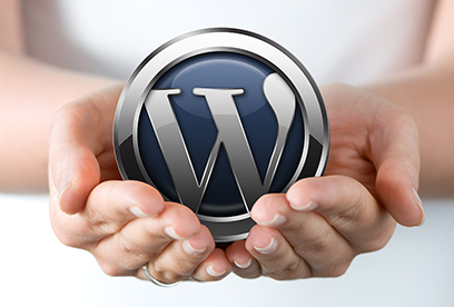 WordPress undervisning